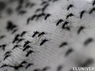 zika,nicaragua,dos mujeres,contagio,oms,minsa,zancudo,sintoma