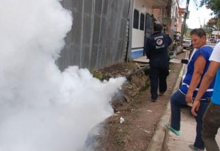 Fumigacion-por-Zika