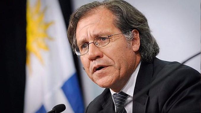 oea,responde a misiva,oposición nicaraguense,elecciones libres y transparentes,observación electoral