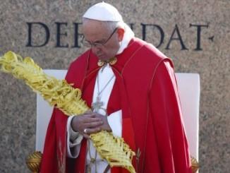 papa francisco,domingo de ramos,el vaticano,refugiados,semana santa,
