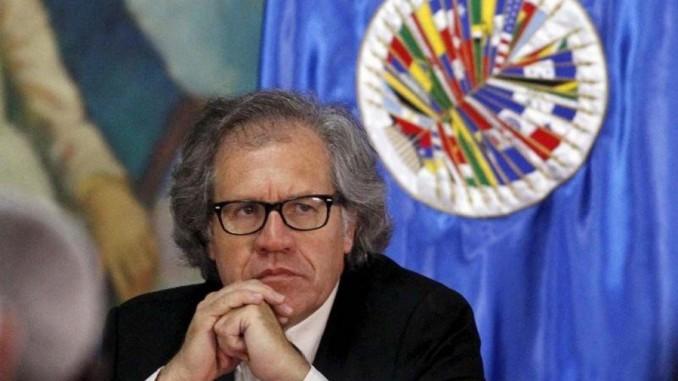 secretario de oea,luis almagro,informe,venezuela,próxima semana,