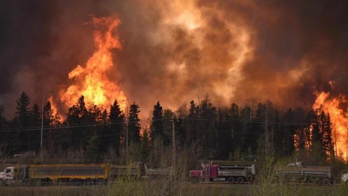 precios,petróleo,incremento,macroincendio,canadá,