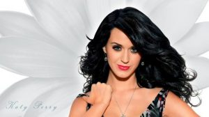 katy perry,90 millones de seguidores,twitter,red social,