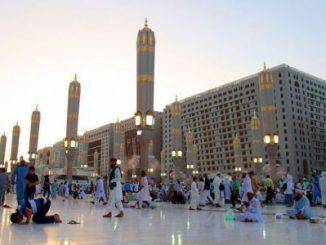 atacantes suicida,Medina,Qatif,Arabia Saudita