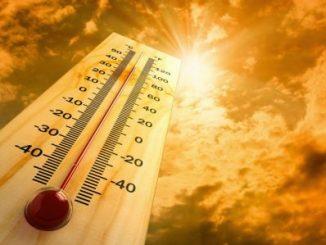 2016,año caluroso,registros,