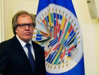 Luis Almagro,Oswaldo Payá,Cuba