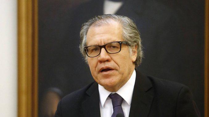 Constituyente,Luis Almahro,OEA,