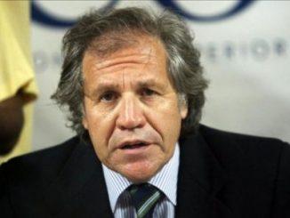 cobardía,OEA,elecciones,Venezuela,
