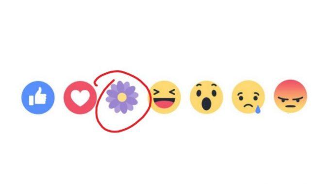 Facebook ha revivido el ícono de la flor violeta