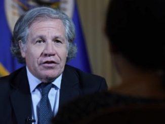 Luis Almagro,OEA,Constituyente,