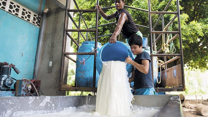 ganaderos,leche,Nicaragua,