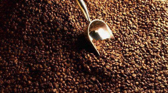 Nicaragua,exportación,café,