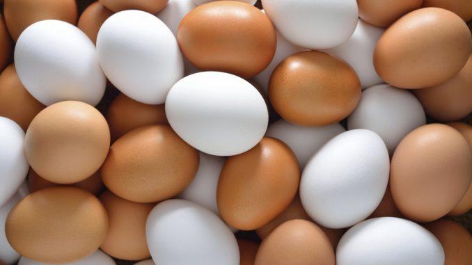 avícolas,huevos,Nicaragua,productores,