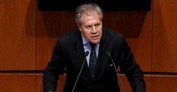 Luis Almagro,OEA,Venezuela,