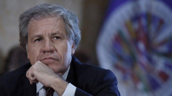 Luis Almagro,Venezuela,elecciones municipales,