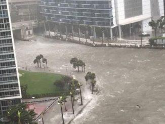 Huracán Irma,Florida,