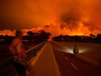 Portugal,incendios forestales,