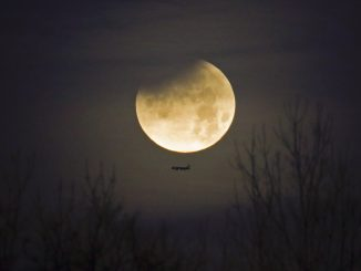 A plane passes by as the moon sets over trees during a phenomena that combined a supermoon, a blue moon and a lunar eclipse in Charlotte, N.C., Wednesday, Jan. 31, 2018. Only a partial eclipse was visible on the East Coast.(AP Photo/Chuck Burton)