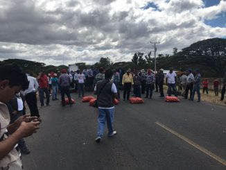 Protesta Cebolla