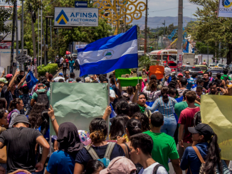 Marcha #SOSIndioMaíz