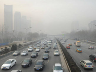 OMS,aire contaminado,muerte,