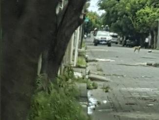 Una camioneta con paramilitares recorre el barrio Larreynaga en Managua