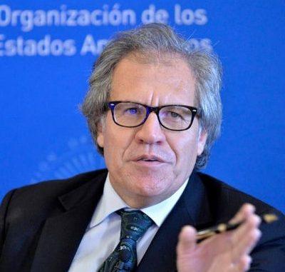 Luis Almagro,presos políticos,Nicaragua,Navidad,